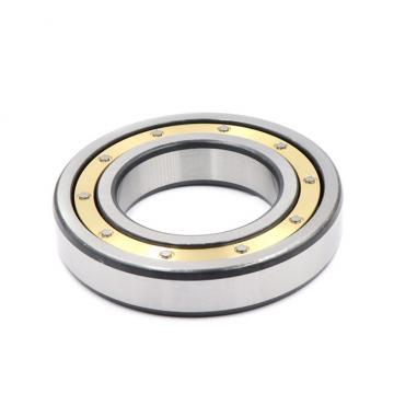 2.165 Inch | 55 Millimeter x 5.512 Inch | 140 Millimeter x 1.299 Inch | 33 Millimeter  SKF NU 411/C3  Cylindrical Roller Bearings